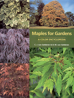 Maples for Gardens.